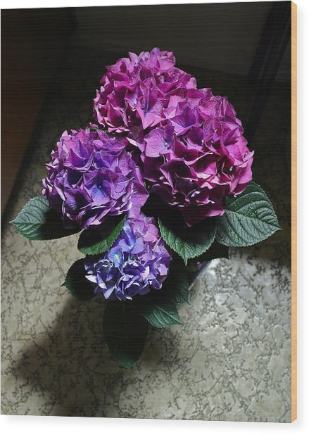 Illuminated Hydrangea Wood Print