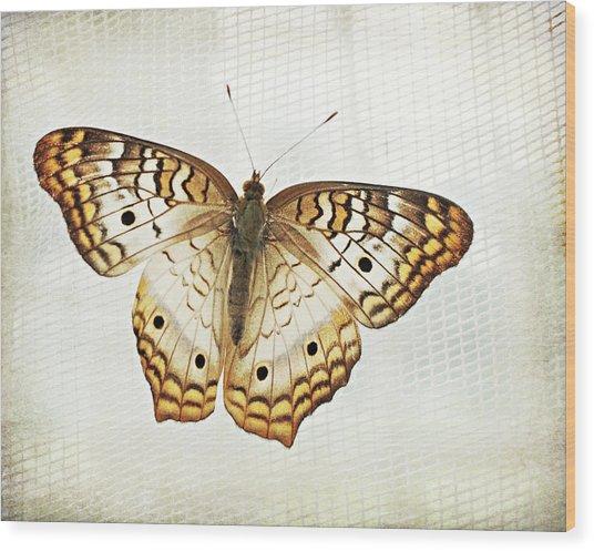 Illuminated Wings Wood Print