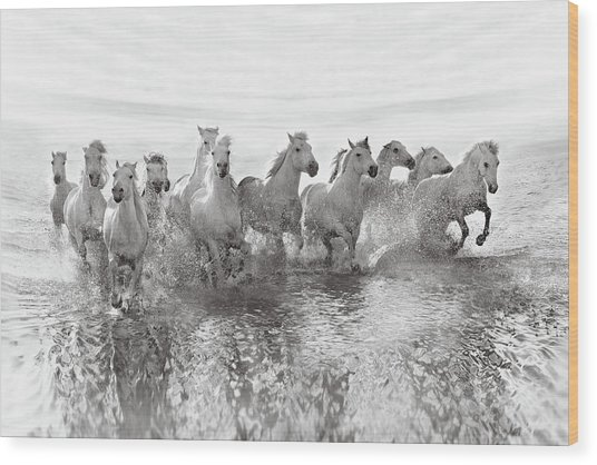 Illusion Of Power (13 Horse Power Though) Wood Print