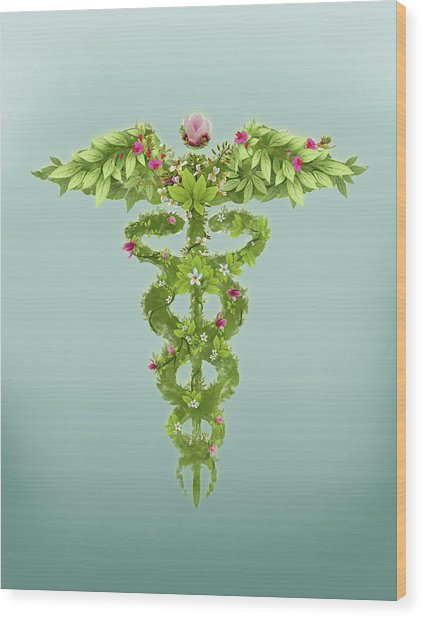Illustration Of Caduceus Symbol Wood Print by Fanatic Studio / Science Photo Library