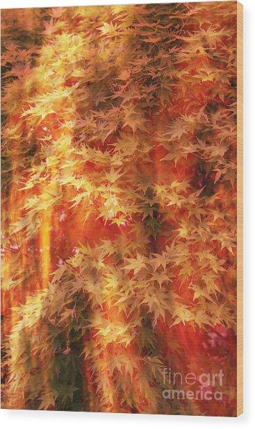 Img 75 Wood Print