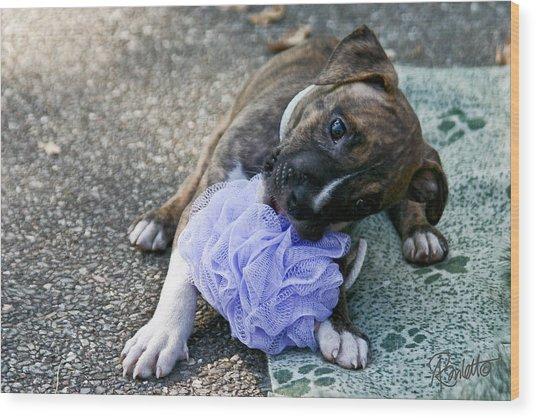 Imma Git U    Pit Bull Pup Wood Print