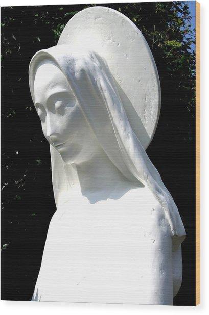 Immaculata 2008 Wood Print