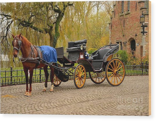 Immaculate Horse And Carriage Bruges Belgium Wood Print