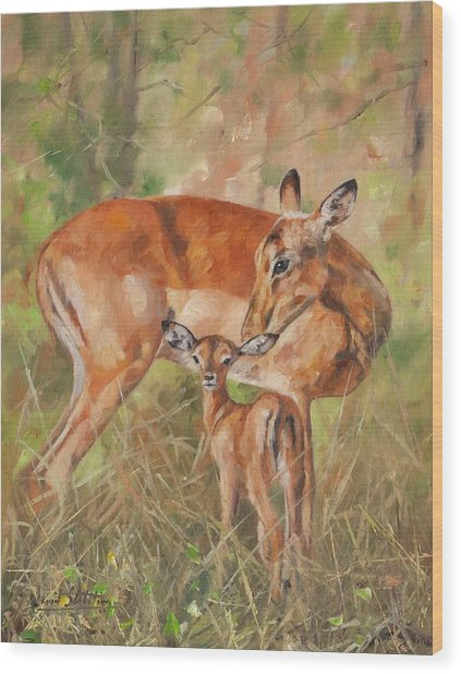 Impala Antelop Wood Print