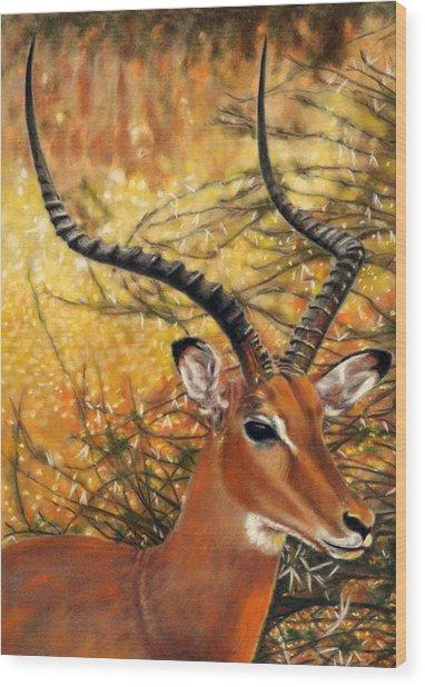 Impala At Sunset Wood Print