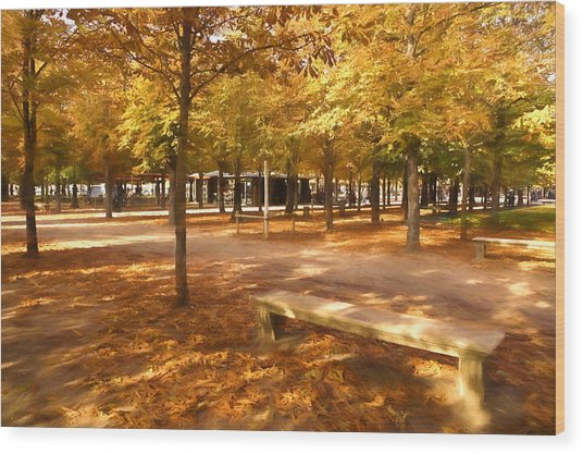 Impressions Of Paris - Tuileries Garden - Come Sit A Spell Wood Print