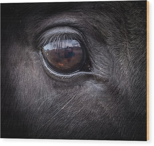 In A Horse's Eye Wood Print