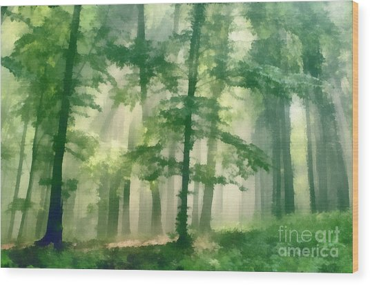 In Forest Wood Print by Odon Czintos