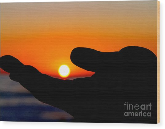 In His Hands By Diana Sainz Wood Print