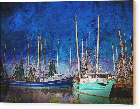 In Safe Harbor Wood Print by Barry Jones