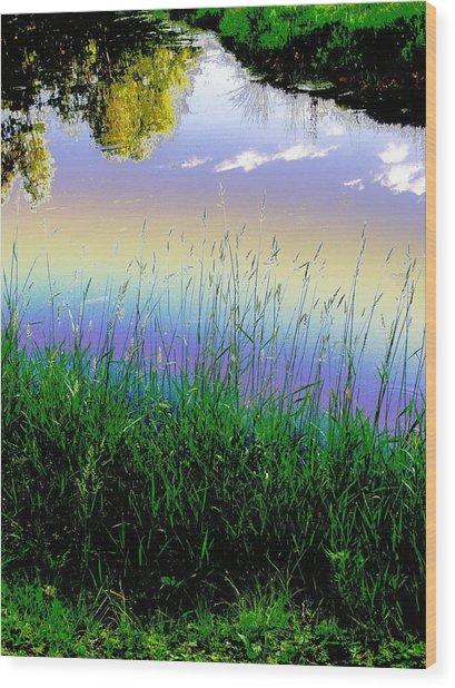 In Spirit Wood Print by Diane Miller