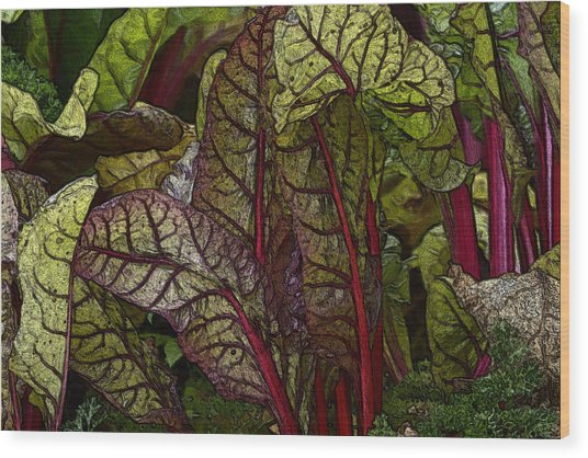In The Garden - Red Chard Jungle Wood Print
