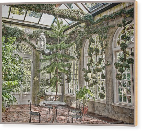 In The Greenhouse Wood Print by Elin Mastrangelo