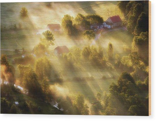In The Morning Sun Wood Print