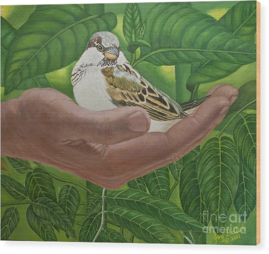 In The Palm Of His Hand Wood Print