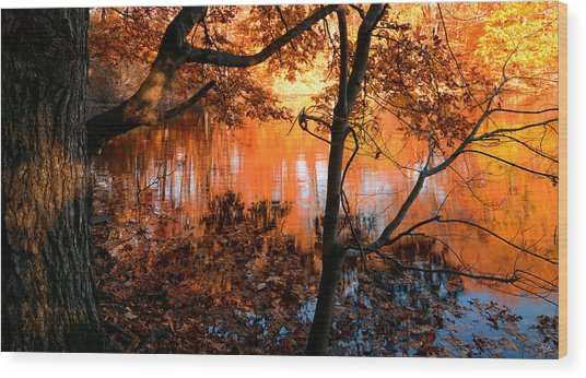 In The Pond Wood Print