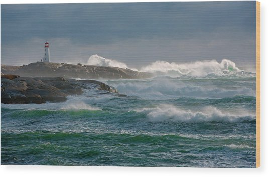 In The Protection Of A Lighthouse Wood Print