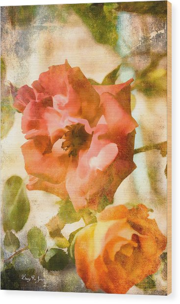 Floral - In The Rose Garden Wood Print by Barry Jones