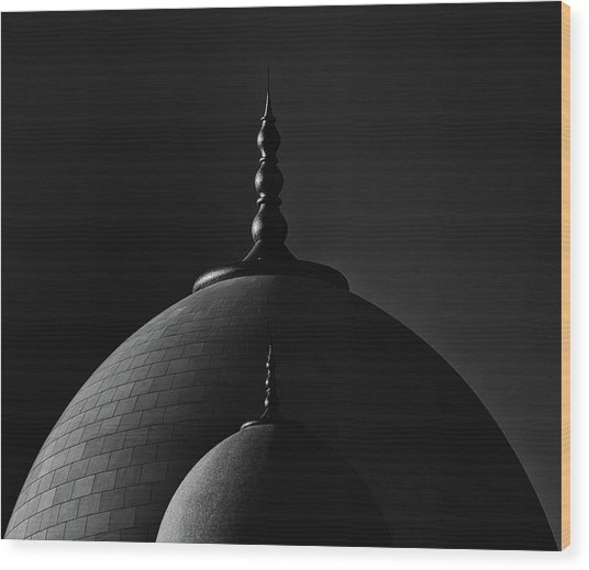 In The Shadow Of A Big Dome Wood Print