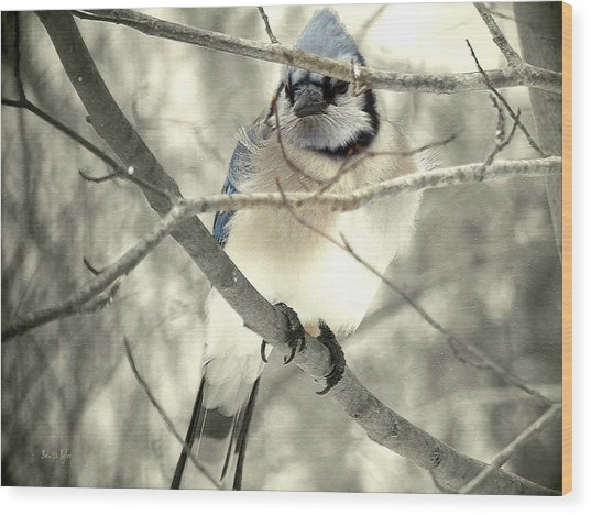 In The Shadows Wood Print by Bonita S Sylor