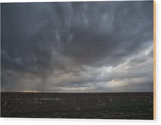 Incoming Storm Over A Cotton Field Wood Print