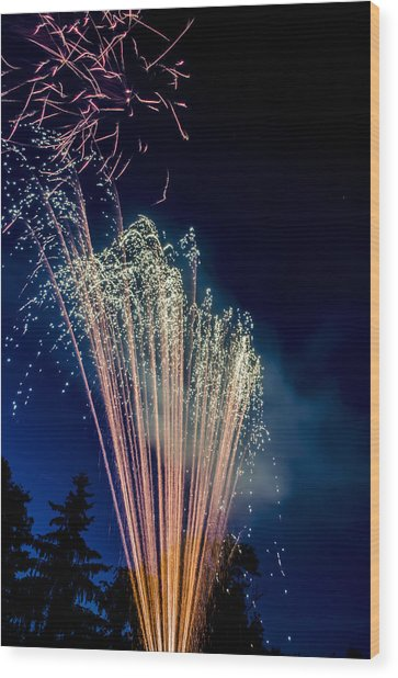 Independence Day 2014 16 Wood Print