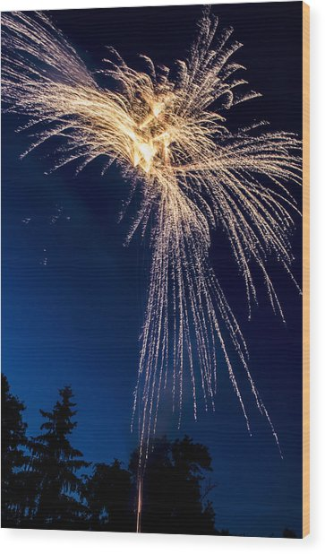 Independence Day 2014 8 Wood Print