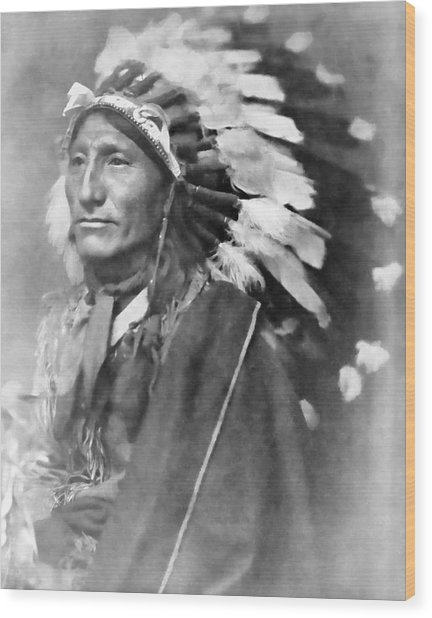 Indian Chief - 1902 Wood Print