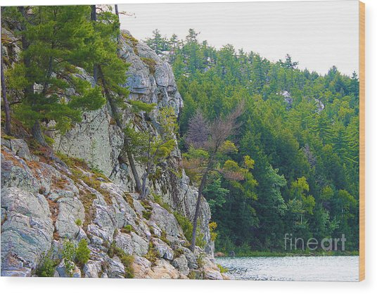 Indian Head In Killarney Wood Print
