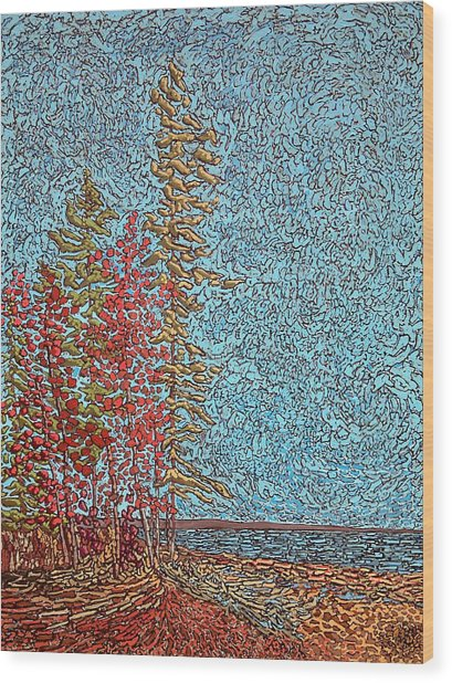Indian Point - May 2014 Wood Print