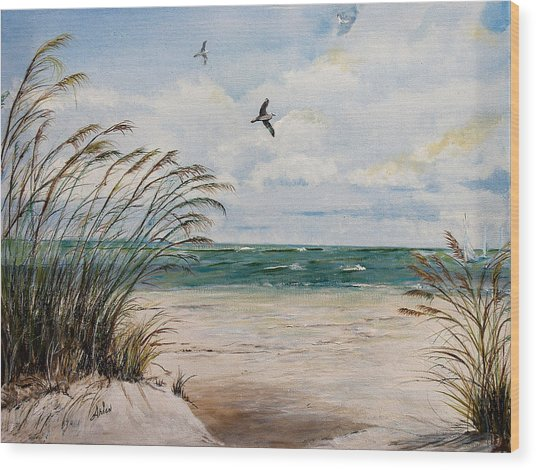 Indian Rocks Beach  Wood Print