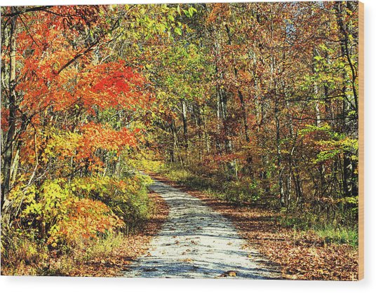 Indiana Back Road Wood Print