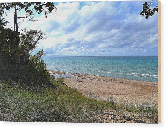 Indiana Dunes Beachscape Wood Print