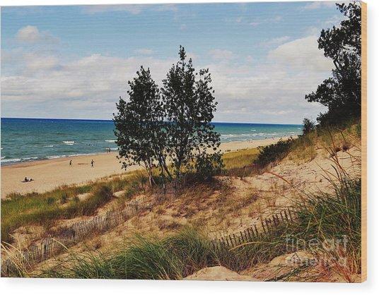 Indiana Dunes Two Tree Beachscape Wood Print