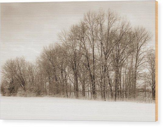 Indiana Winter At Freedom Park - Horizontal Wood Print
