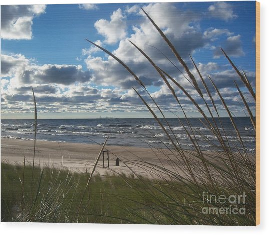 Indiana Dunes' Lake Michigan Wood Print