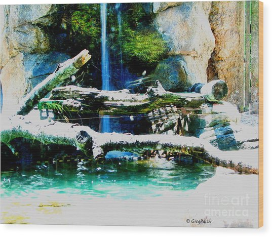 Indoor Nature Wood Print by Greg Patzer