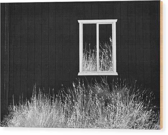 Infrared Barn Wood Print