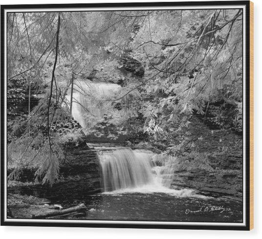 Infrared Upper Buttermilk Falls 10 Wood Print by David Blatchley
