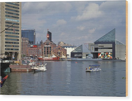 Inner Harbor Baltimore Md Wood Print by Gail Maloney