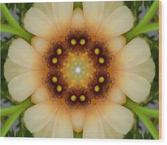 Inner Petal Flower Mandala Wood Print