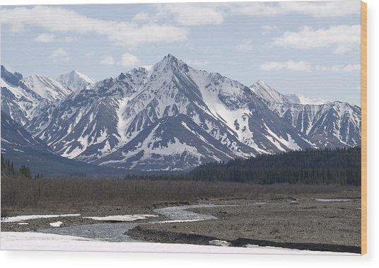 Inside Denali National Park 4 Wood Print
