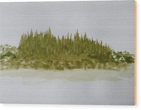 Inside Passage Islet Wood Print