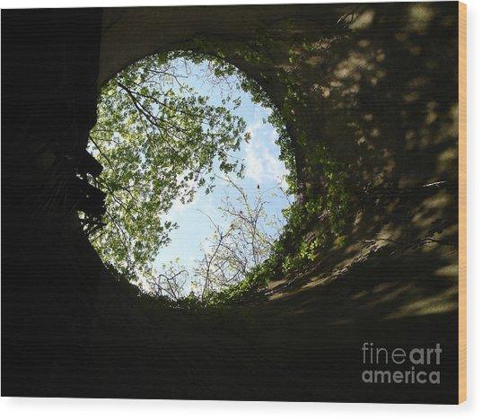 Inside The Silo Wood Print