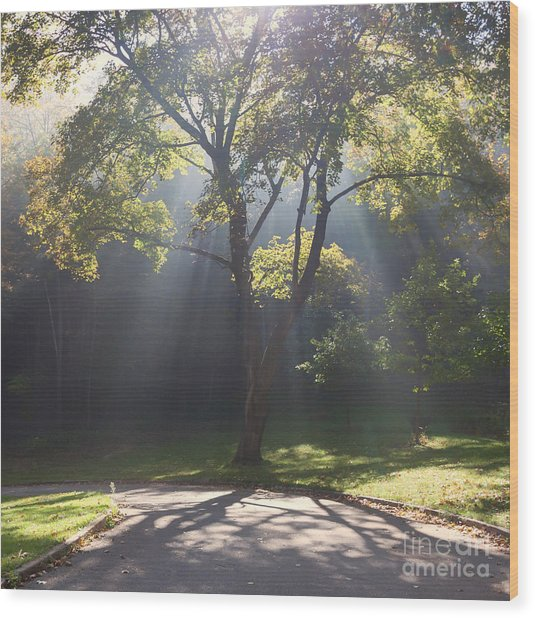 Wood Print featuring the photograph Inspirational Scene Sun Streaming Fog Square by Kari Yearous