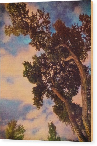 Inspired By Maxfield Parrish Wood Print
