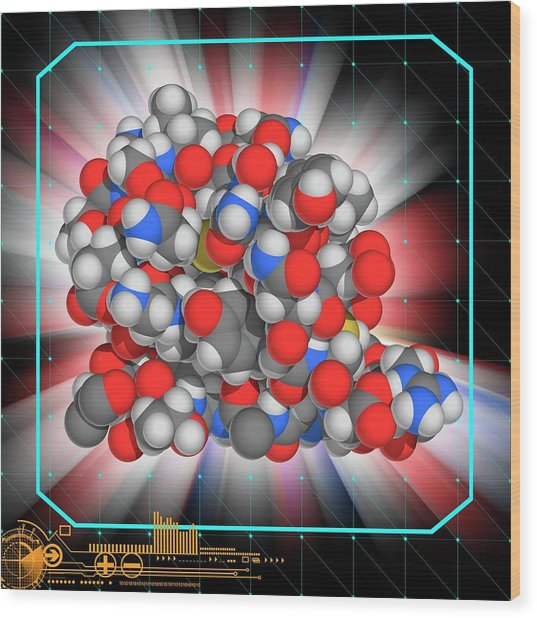 Insulin Glargine Drug Molecule Wood Print