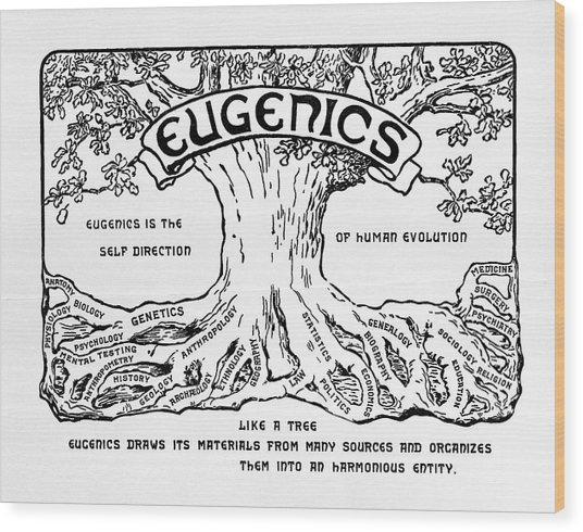 International Eugenics Logo Wood Print by American Philosophical Society