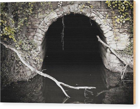 Into The Black Wood Print